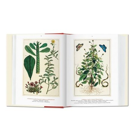 taschen_seba_cabinet_of_natural_curiosities_4_formost.png