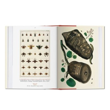 taschen_seba_cabinet_of_natural_curiosities_2_formost.png